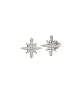 Stories Snowflake earrings - 5040.2678